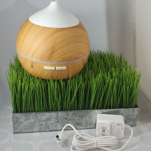 Nwt Home Essential Oil Diffuser